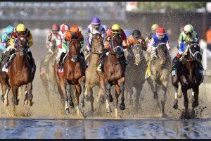 Belmont Stakes 2018 : Who won the race.